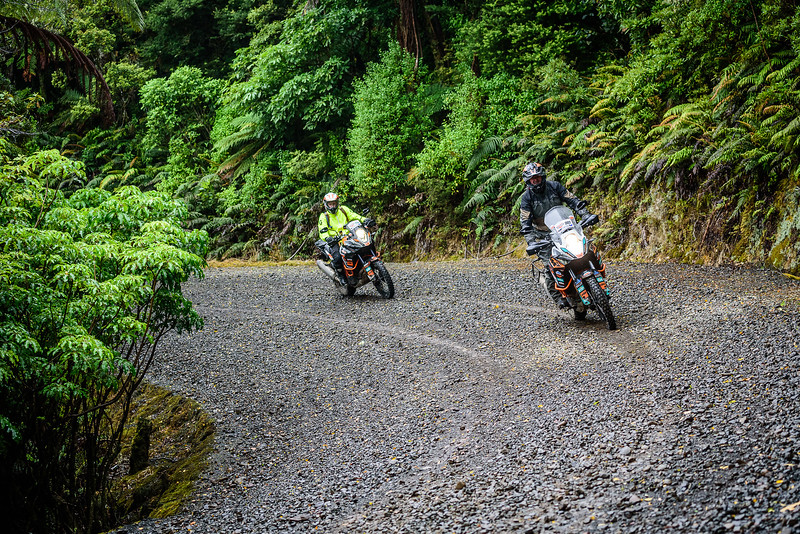 2018 KTM New Zealand Adventure Rallye - Northland (124).jpg