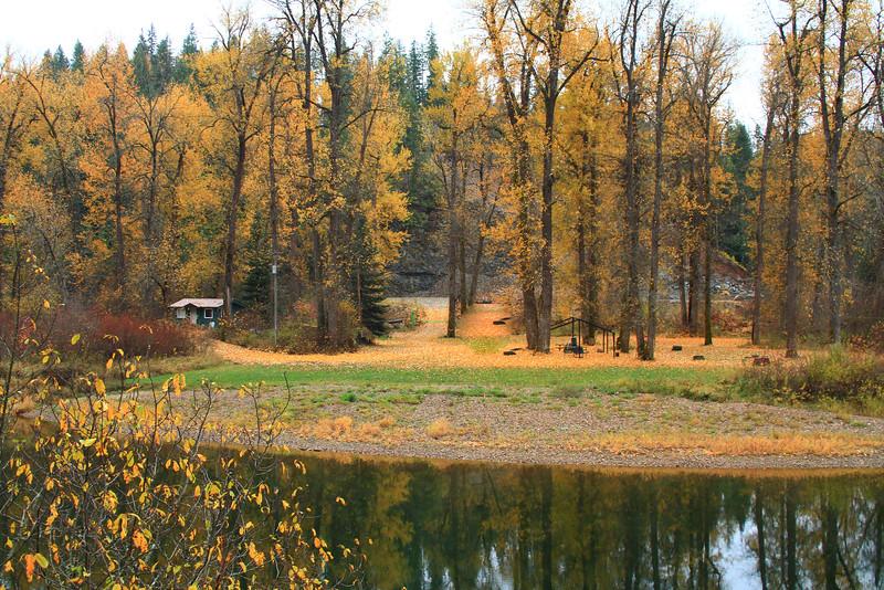 fall 2015-8210.jpg