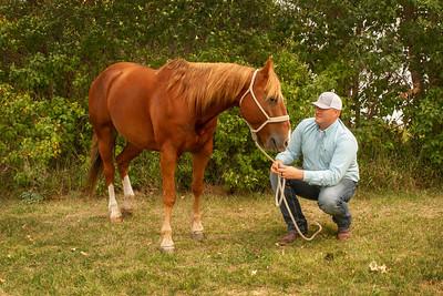 Meagan - Horses & Humans