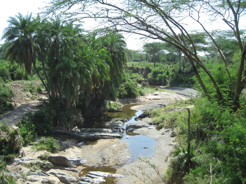 Tanzania14-3593.jpg