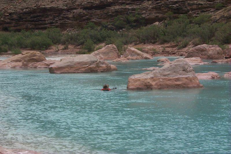 Swimming   (May 30, 1999, 01:31pm)