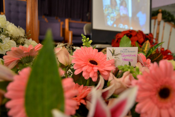 Celebrations of Life  & Legacy (Memorial Services)