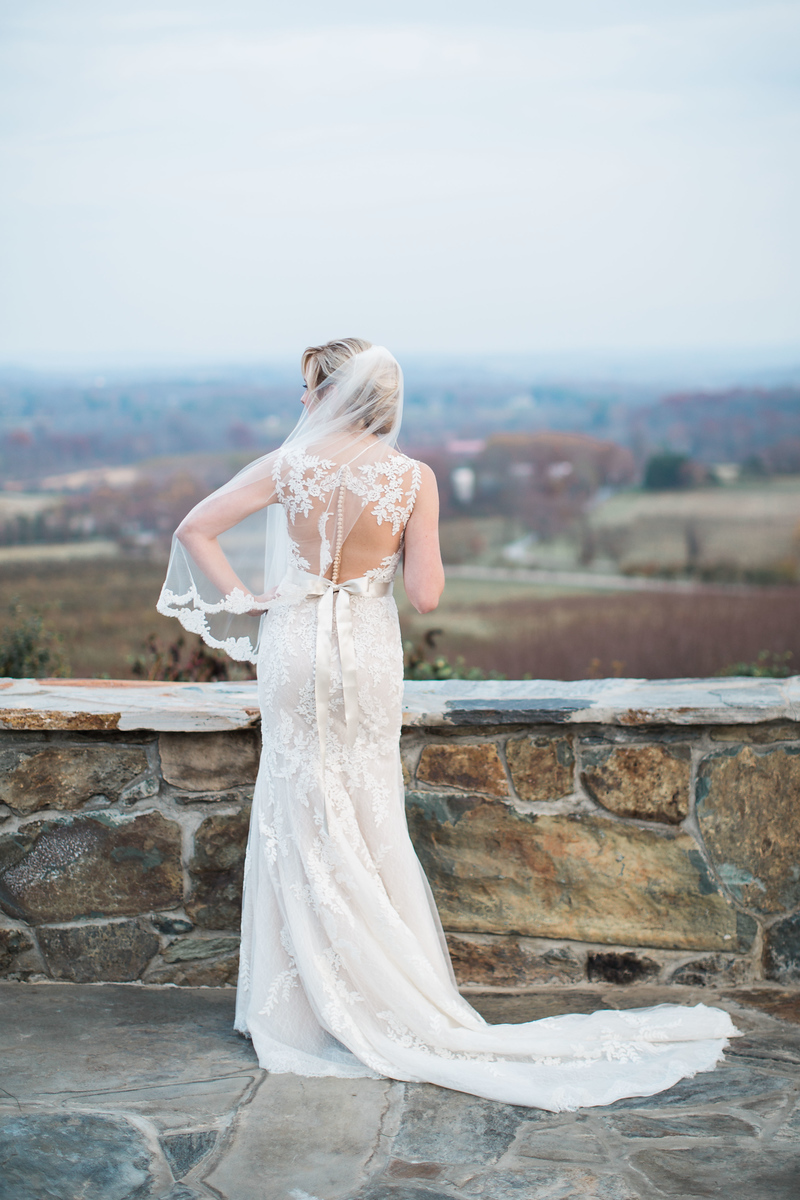 Meg's illusion back wedding dress overlooking the Bluemont Vineyards wedding reception location. Images by the best Washington DC wedding photographer Jalapeno Photography.