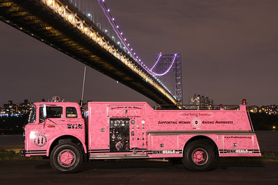 Daria Pink Heals  GWB Cancer Awareness Month  Oct.2013