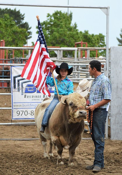 Buckers Brush Bull Riding