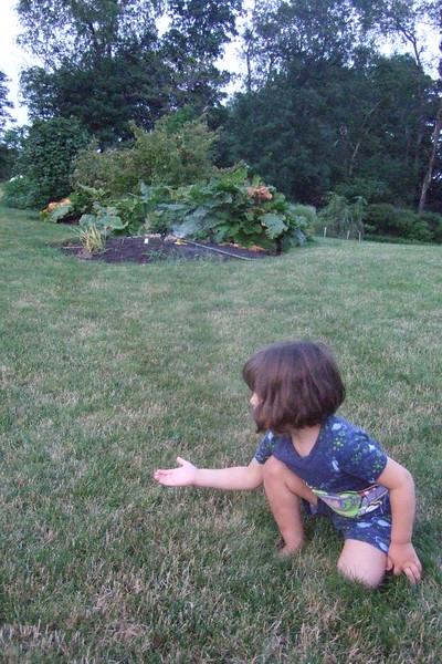 Chasing fireflies.