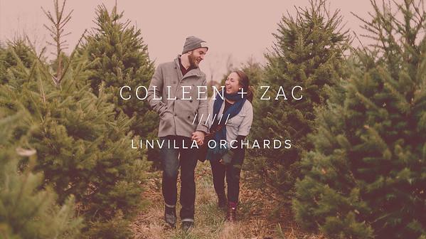 COLLEEN + ZAC ///// LINVILLA ORCHARDS