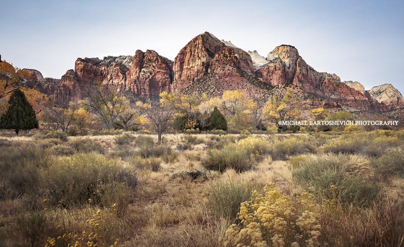 Zion Meadow-1.jpg