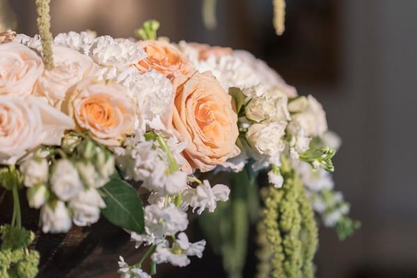 * NEW - MWD Lifestyles - Wedding - Dhara & Aditya