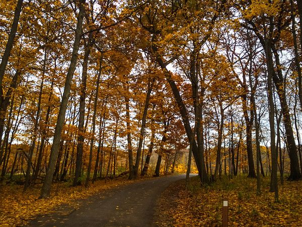Arboretum Fall 2013 iPhone