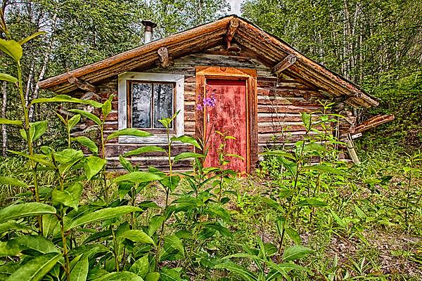 John Haines Cabin