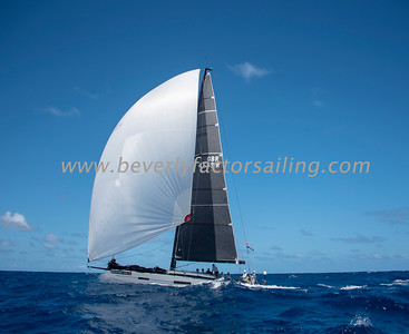 PATA NEGRA - Under Sail