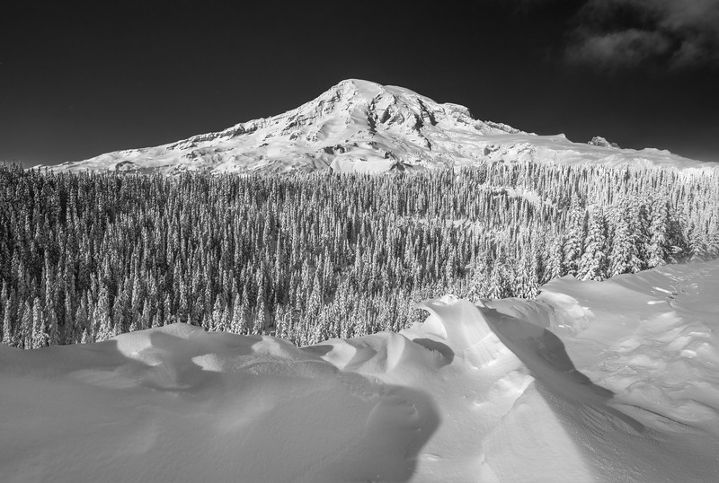Rainier_Snow_Drift_no border.jpg