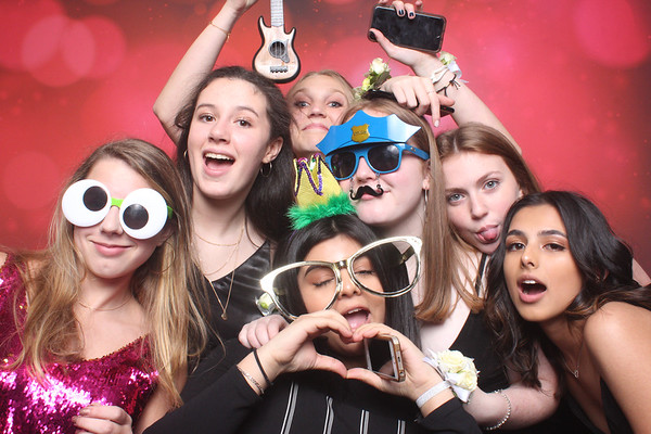 2017-2018 Winter Ball January 2018