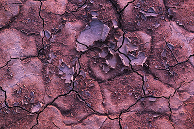 Parched Earth