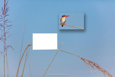 Enhancing and Cropping Photographs