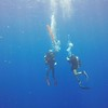 Philippe qui lache son parachute, qui rempli d'air, va remonter en surface et signaler les plongeurs  pendant qu'il font leur palier, en se  tenant à la ficelle qui pend au bas du parachute