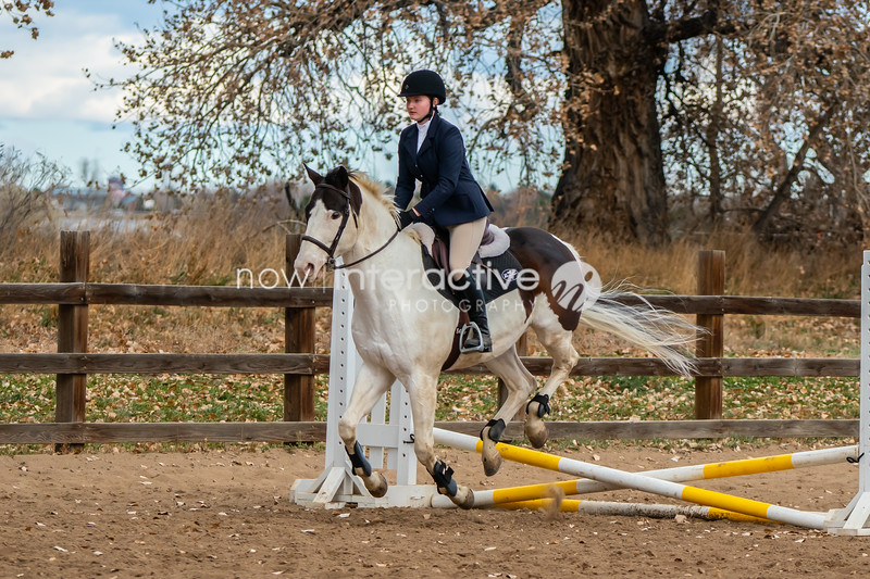 Hunter Jumper - Crossrails Classes - Cornerstone Farm