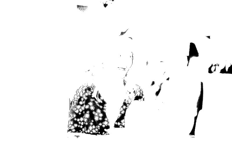 DSC08961.png