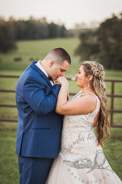 Central FL wedding photographer-3708.jpg