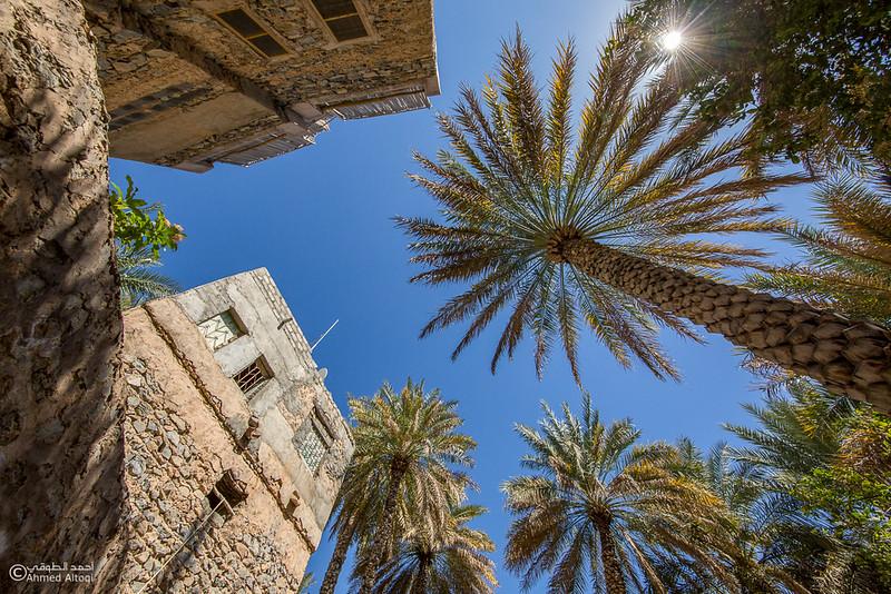 Misfat Al Abryeen - Oman  (12).jpg