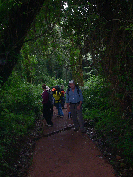 Rain forest: 1800 - 2800 m. More than 1,000 plant species are endemic. Huge variety of birds & monkeys