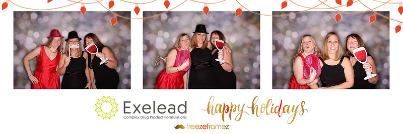 2018 Exelead Holiday Party