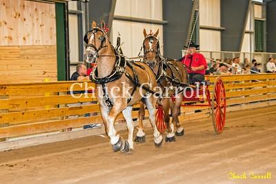 Draft Horse Show - Thursday - 8-26-2-015