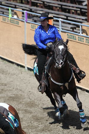 wlrca 2009 high valley riders