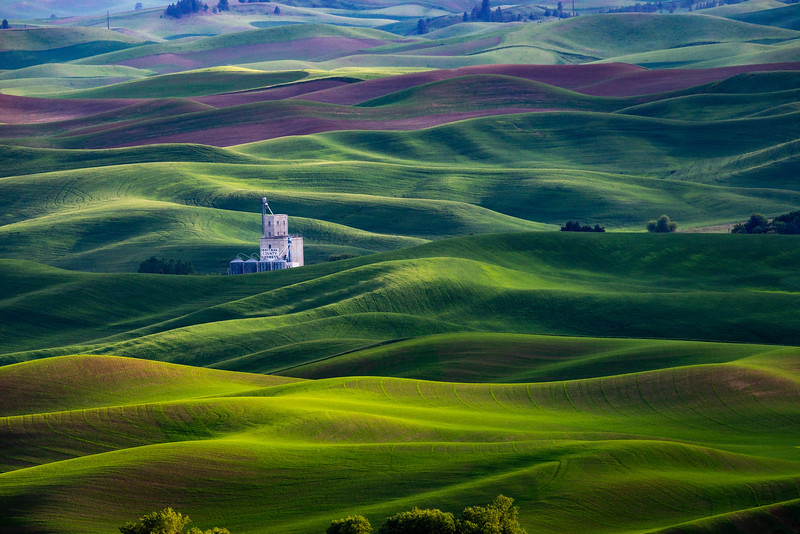Late Afternoon on Steptoe Butte