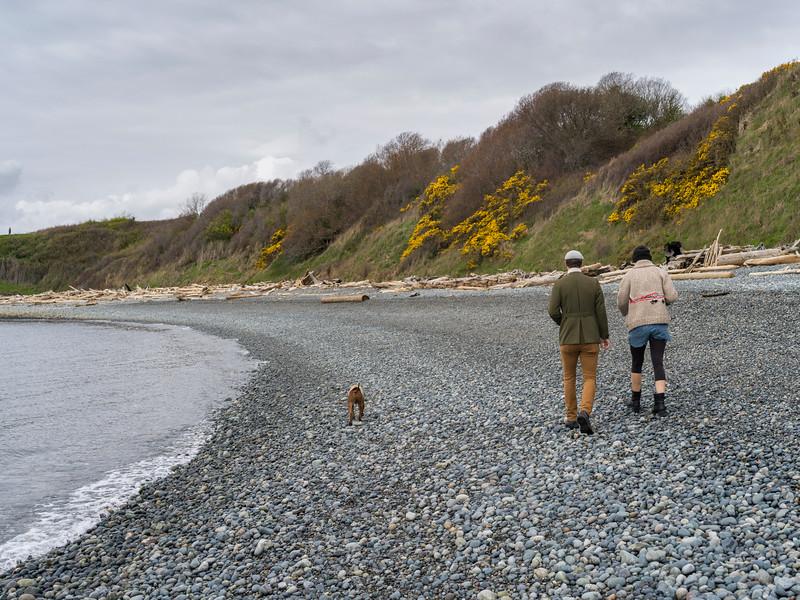 Tourists walking on Spiral Beach, Victoria, British Columbia, Canada
