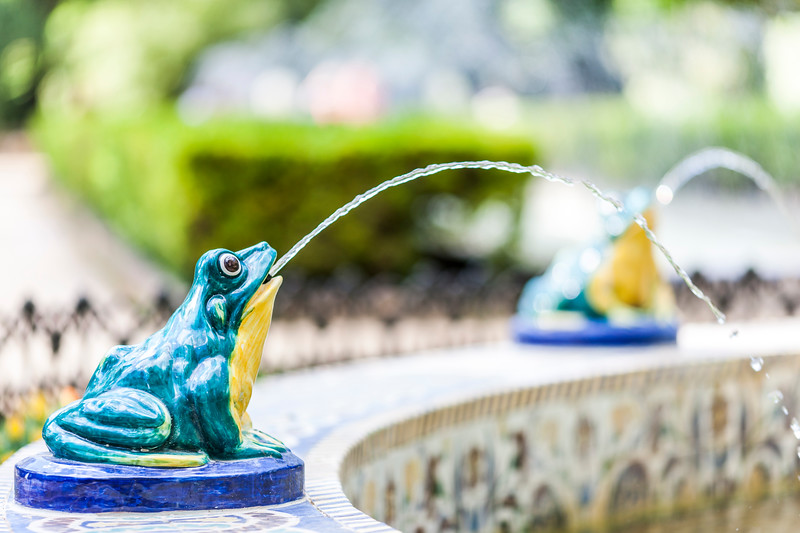 Glazed ceramic frog in a fountain, Maria Luisa park, Seville, Spain