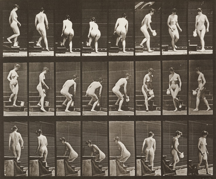 Nude woman descending stairs and stooping (Animal Locomotion, 1887, plate 150)
