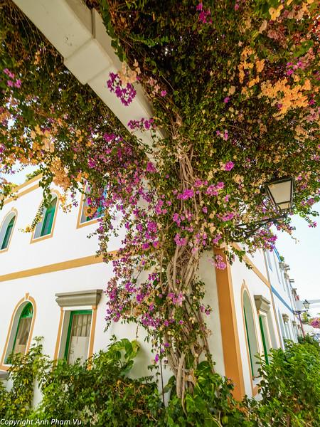 Gran Canaria Aug 2014 170.jpg