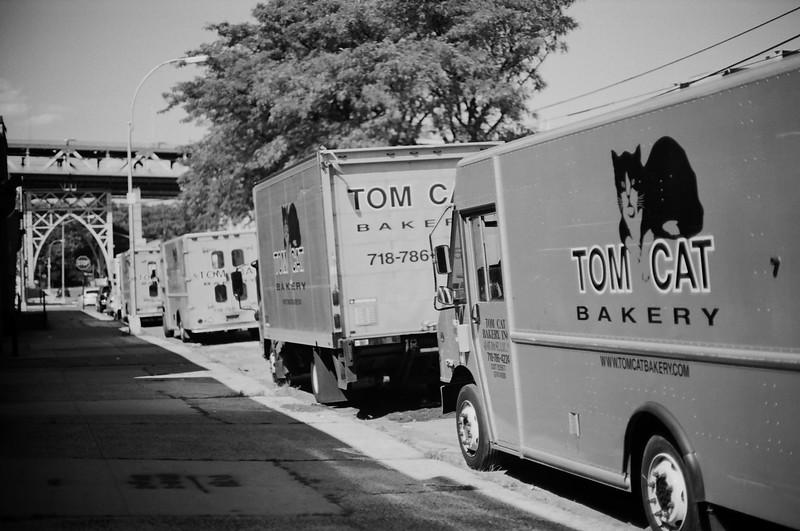 Tom Kats