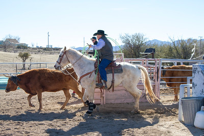 2017-Sunday Roping-0002