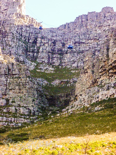 Cable cars up to Table Mountain