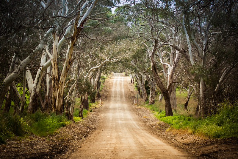 Country road, South Australia