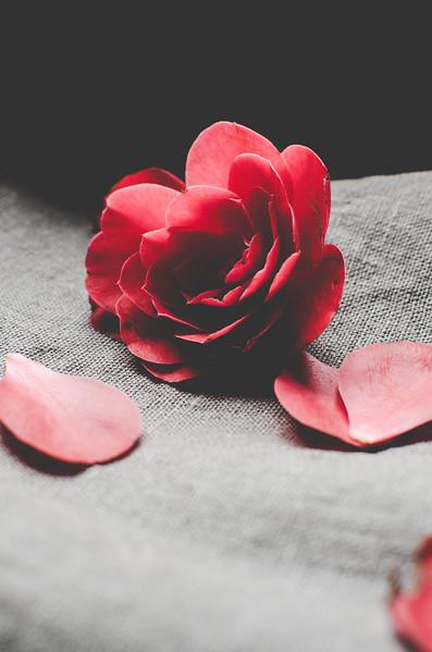 Flowers-29.jpg