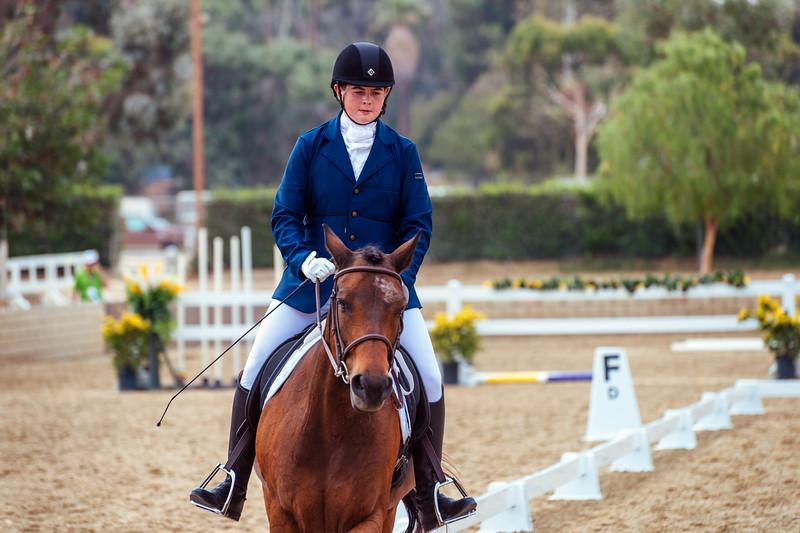 Equestrian30July2015 (25 of 139)-Edit.jpg