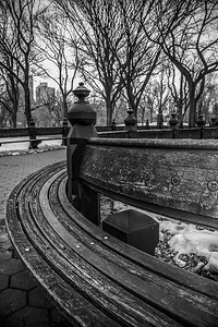 NYC LANDSCAPES