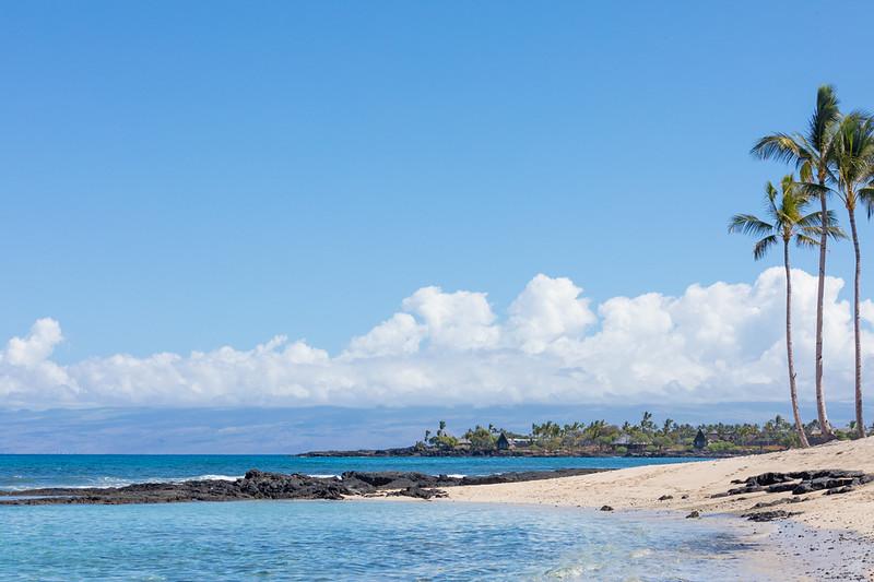 Travel_Hawaii_03062020_0130.jpg