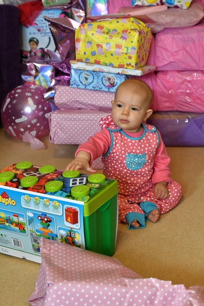Daisy's first birthday Oct 2017 038_DxO 1.jpg