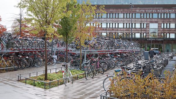 Uppsala in the autumn