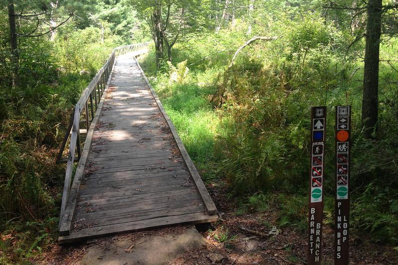 Pink Beds Loop-Barnett Branch Trail Junction