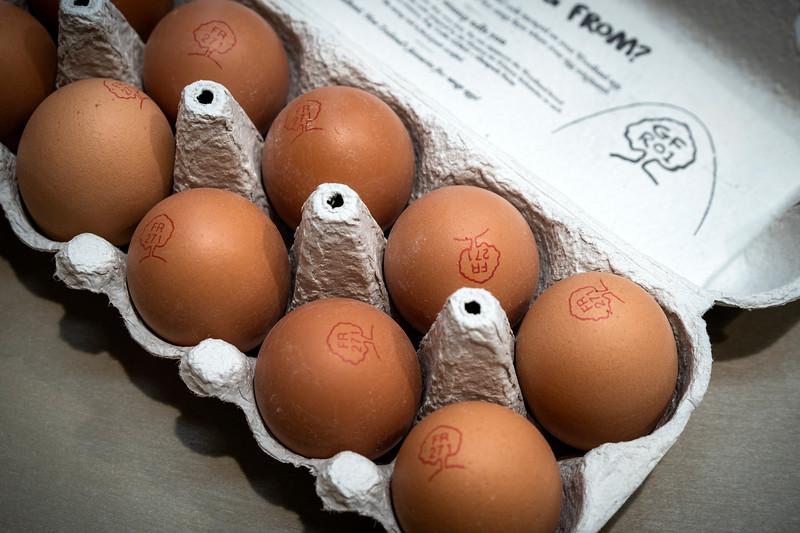 Eggs 92.jpg