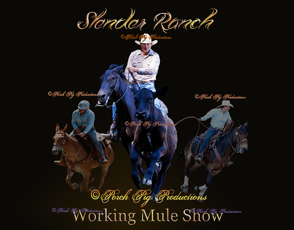 Highlights Tucker Slender Mule Show