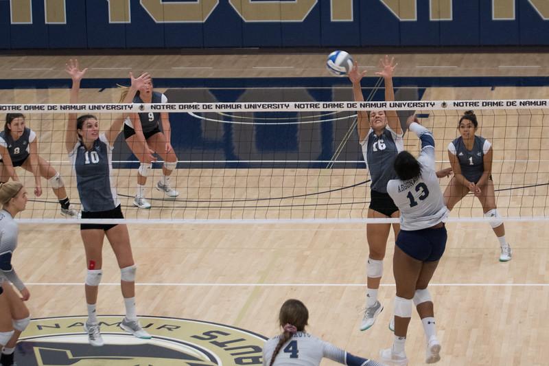 HPU Volleyball-92080.jpg