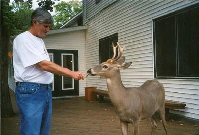 Boyd's deer