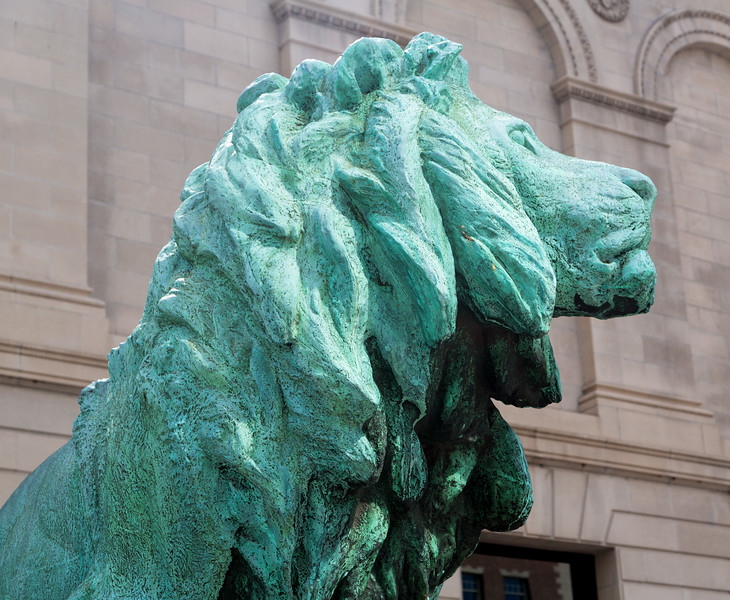 The Art Institute lions are a Chicago icon.
